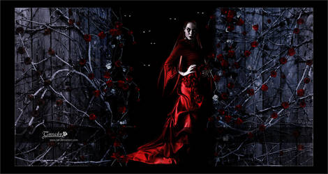Vampire: The Toreador by KKL
