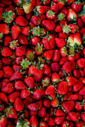 Ches Fresas by rageforst