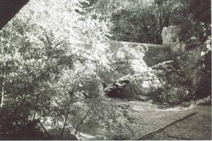 Dellwood Park II by Sylderon