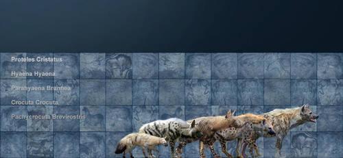 hienas by serchio25