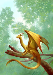 Dragonet by Dedefox
