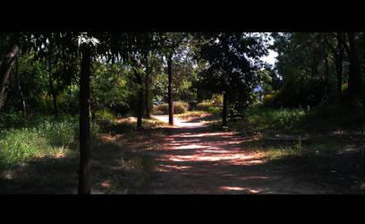 Pathway by malaykeshav