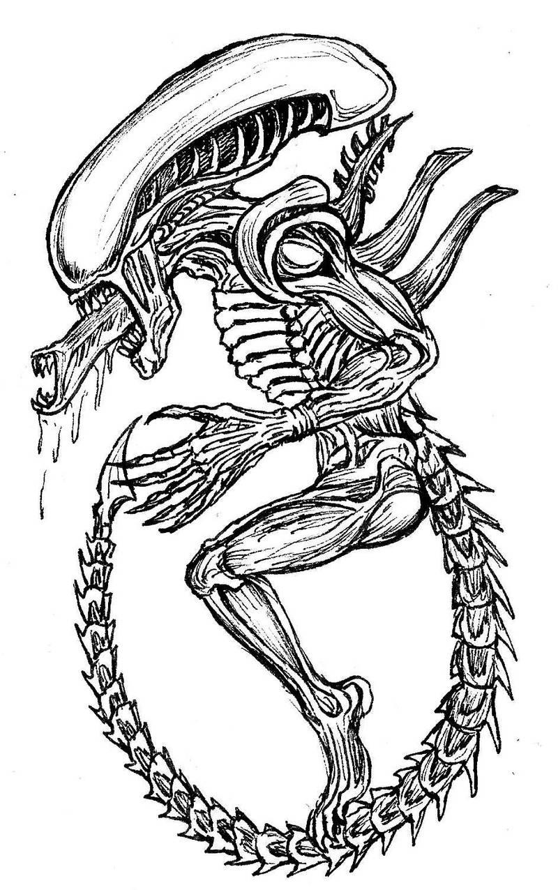 Alien sketch by devilkais