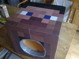Minecraft head by SaintAnlay