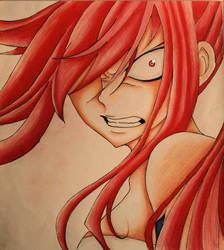 Fairy Tail 316 - Erza Rage by Alishay1993