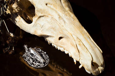 Wild boar skull necklace by xNatje