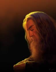 Gandalf by Aegileif