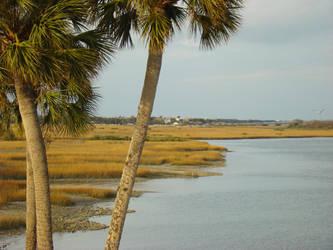 A photo in Florida by Sadasant