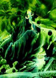 Green by Caerlleon