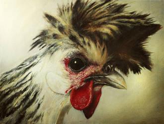 Chicken by Hypercuts
