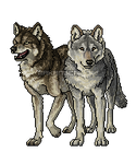 Pixel wolves by makangeni