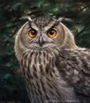 Eagle Owl by makangeni