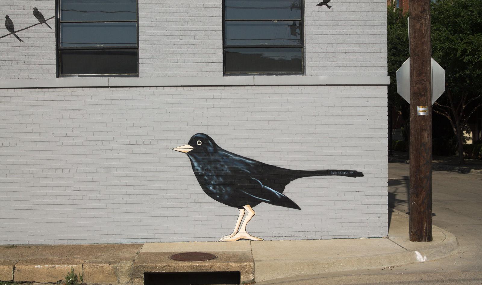 Put a bird on it by DeepSlackerJazz