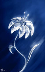Lithium Flower by Miraris