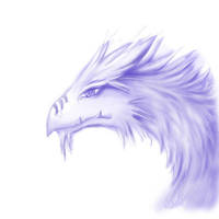 Dragon by Miraris
