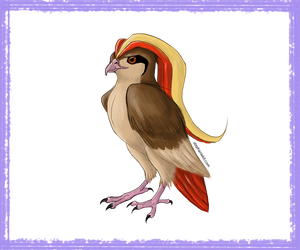 FLYING-TYPE :: Pidgeot (Pokemon) by kitxunei