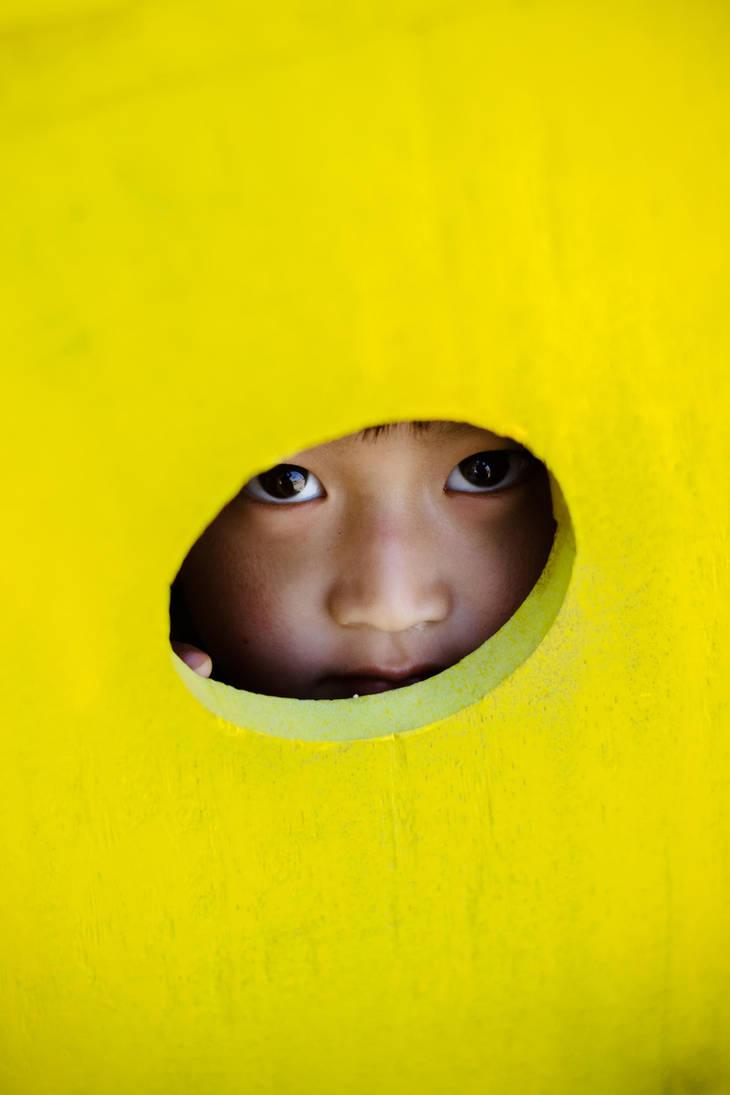 Peek a boo by rguite