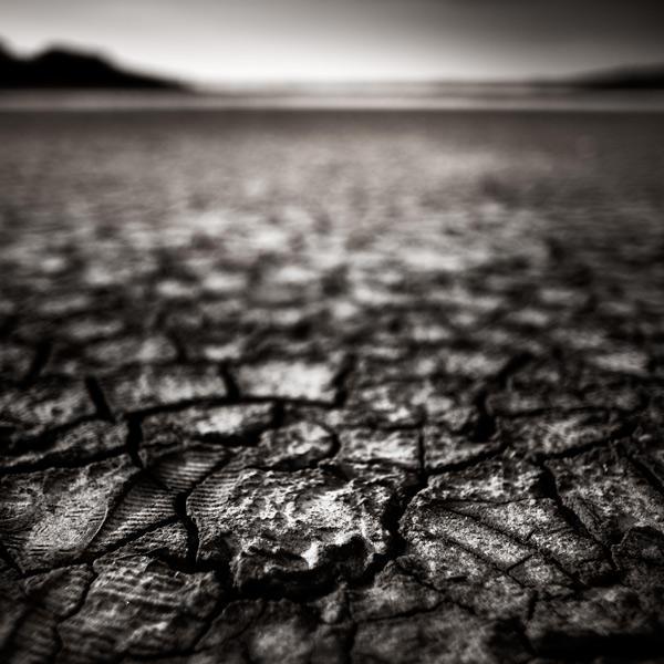 Desert by xavierrey