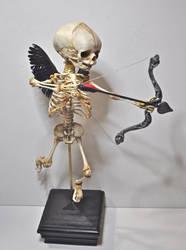 Cupid Skeleton by DellamorteCo