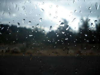 Rainy by CookiezLover