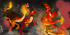 Fire Pokemans by Shnider