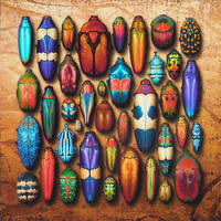 Chromatic Entomology III by CristinaSamsa