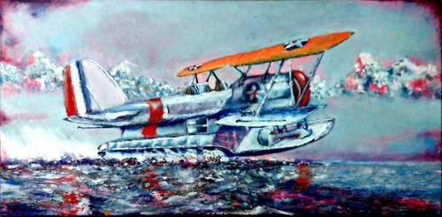 Grumman J2F Duckplane (Colour) by starz300