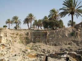 Israel 61 by joanielynn