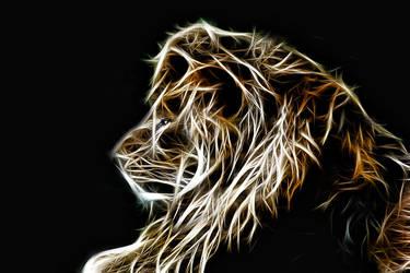 Panthera leo by joanielynn