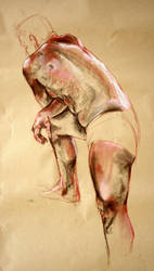 Dry pastel on paper - from back by LadyLuigi