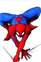 Marvel: Spider-man by RyesAsylum27