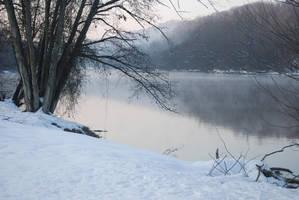 Morning Winter River Fog 05 by Muttstock