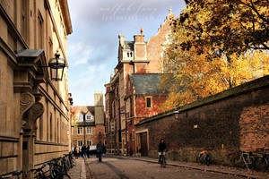 Cambridge IV by wolfish-fang