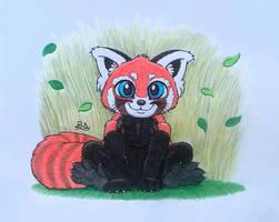 A Red Panda by PilloTheStar