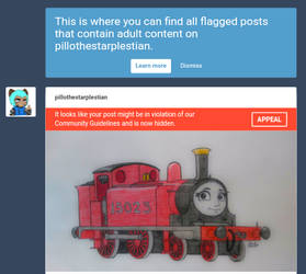 Tumblr flagged for adult content but it's a train by PilloTheStar