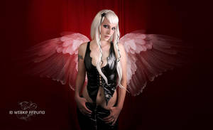 Angel Wings by Labecula