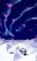 Polar Bear Christmas Card by wildpaintings