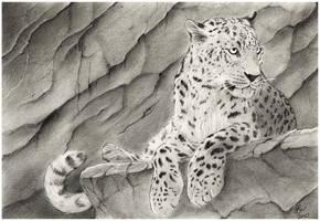 Leopard by wildpaintings