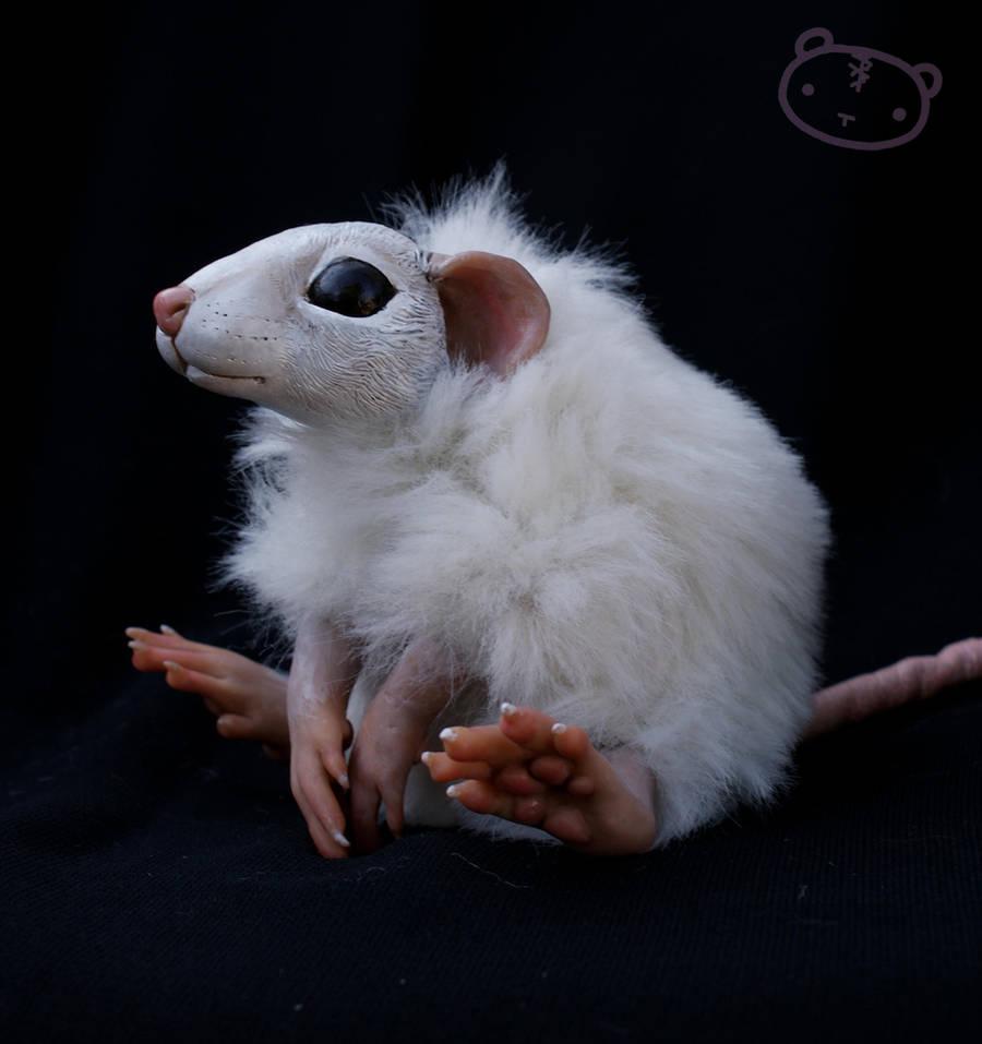 Pancake the rat - commission by LisaToms