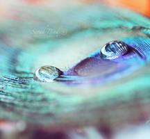 magic circle. by Blueberryblack