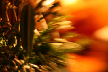 PhotoHunt: Blur by Artificient