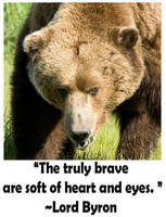 Bear totem by UchihaDEMS