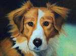 Mike's Brother's Dog by LymanDally