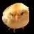 Chick Emoticon