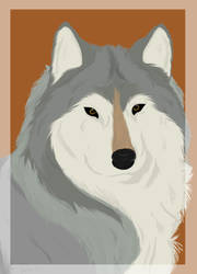 Wolf Head Shot by Transcribe