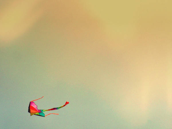 kite runner. by LuNaR-fLooD