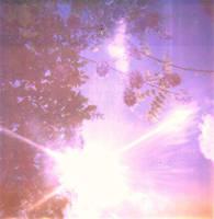 the seasons by LuNaR-fLooD