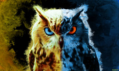 Double face of Owl by asganafer