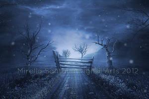 DARK NIGHT by MirellaSantana