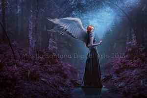 Enchanted Forest by MirellaSantana